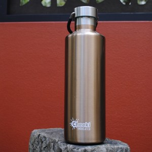 600ml Classic Insulated Bottle - Champagne (3)